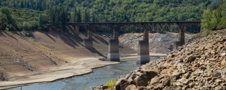 Shasta Lake on August 25th, 2014.  This is looking from what could be the lake front water of Shasta Lake Rv Resort and Campground on the Sacramento River Arm of the lake. (August 25th, 2014)