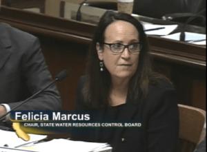 Felicia Marcus 2