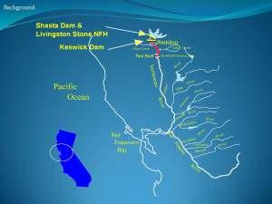 Shasta Dam FP_Page_27