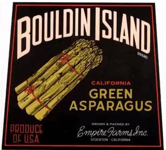 11 Bouldin Island