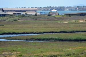 Chula Vista Nature Center at Sweetwater Marsh