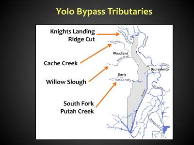 Yolo Bypass BB_Page_10
