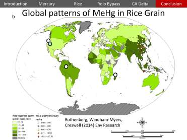 USGS Mercury Rice Delta_Page_47