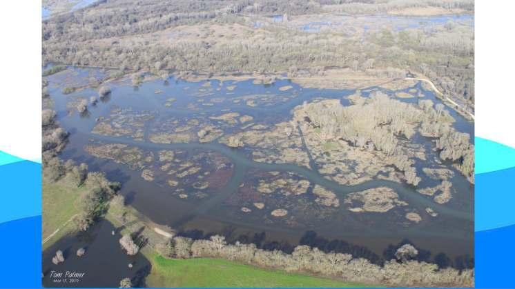 Crowfoot Floodplains PDF_Page_65