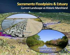 MWD Yolo Bypass PPT_Page_08