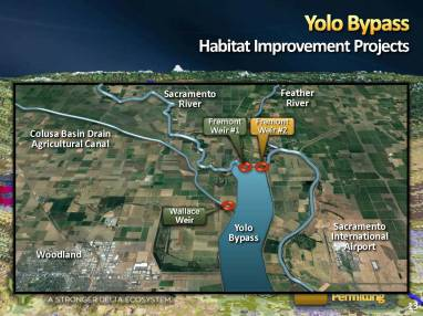 MWD Yolo Bypass PPT_Page_13