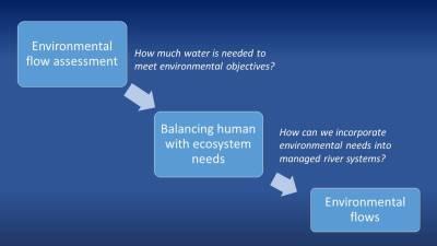 Environmental flow assessment graphic