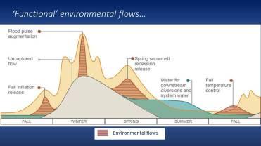 Functional flows or environmental flows