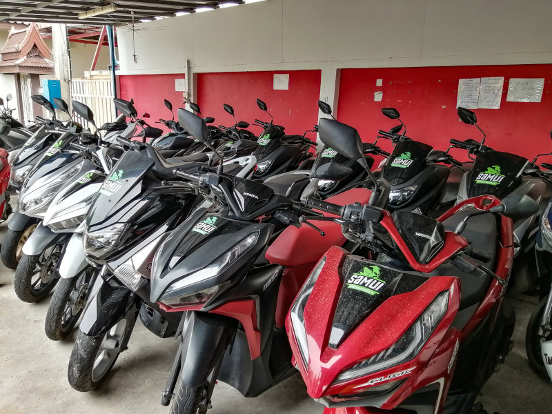 Location scooter à Koh Samui chez Samui Découverte (Eddy).