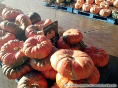 Choice of Pumpkins at Whole Foods Austin, TX | Books, Cupcakes, and Cats Chasing Chipmunks