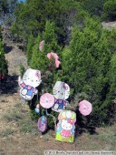 Austin's Loop 360 Christmas Trees | Books, Cupcakes, and Cats Chasing Chipmunks