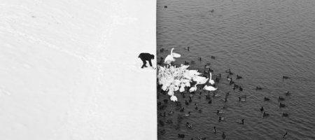 彩度的掌控-黑白調(去飽和度)
