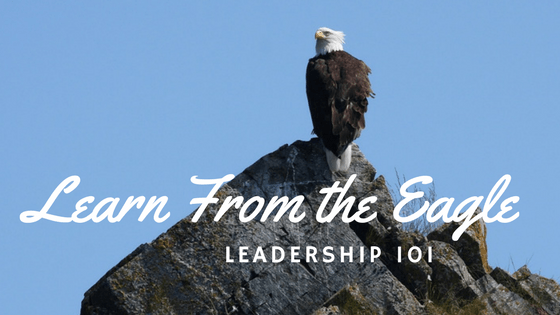 Leadership 101 - Take it from the Eagles - Maryann Ward