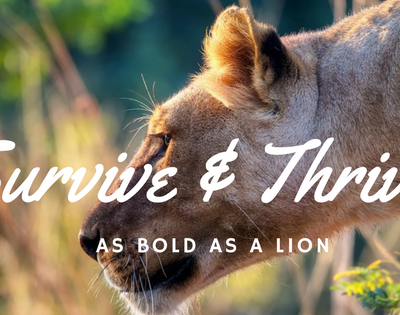 The Righteous are as Bold as a Lion – Survive and Thrive
