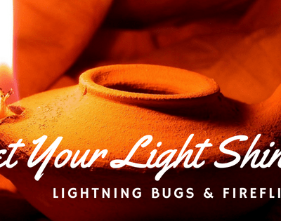 Fireflies and Lightning Bugs – Let Your Light Shine!