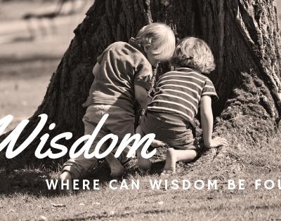 Developing Wisdom – Where Can Wisdom be Found?