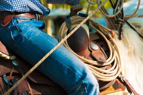 Cowboy persistence