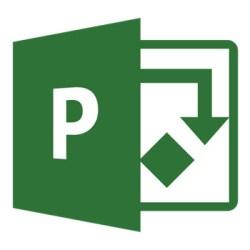 Microsoft Project 2016 Icon