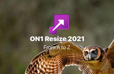 ON1 Resize 2021 v15.0.1.9783 (Full) โปรแกรมขยายภาพไม่แตก