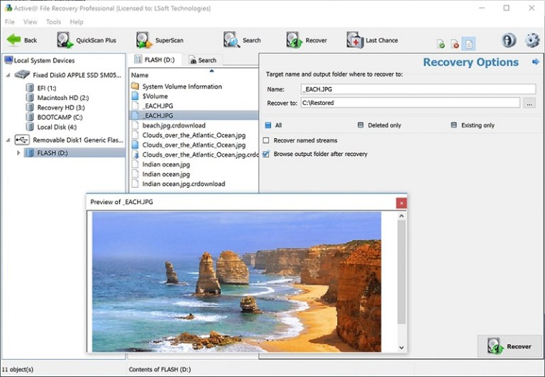 Active File Recovery dialog