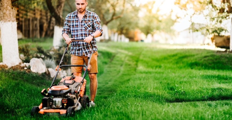 Top 10 Best Honda Lawn Mower Black Friday Deals 2021