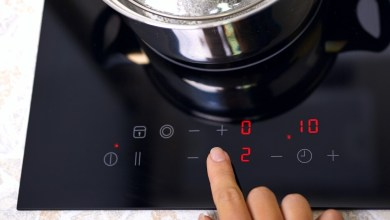 Top 10 Best Induction Stove Black Friday Deals 2021