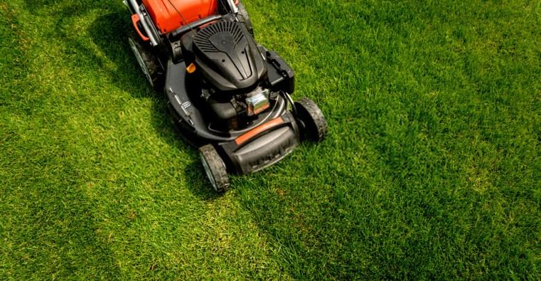 Top 10 Best Lawn Mower Black Friday Deals 2021