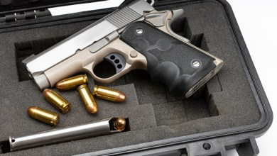 Top 10 Best Vaultek VTI Full-Size Biometric Handgun Black Friday Deals 2021