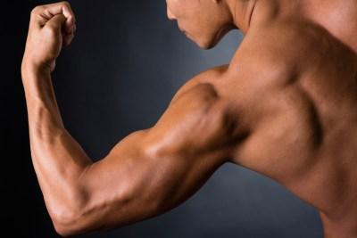成長した筋肉