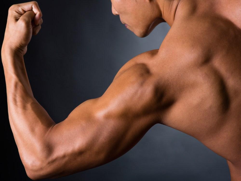 太い腕 鍛え抜かれた筋肉