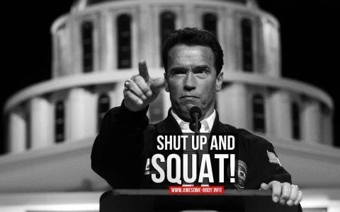 Many of the most motivational gym quotes come from Arnie.