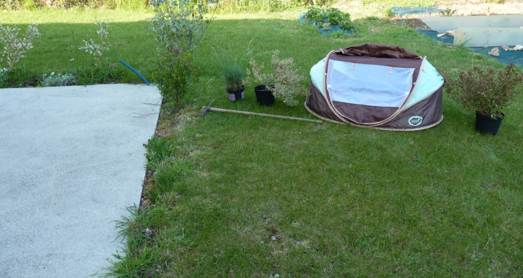 plantes-terrasse