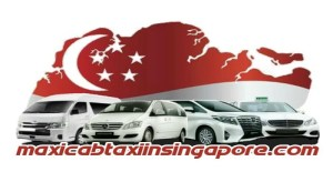 new logo 300x164 About Maxicab Taxi In Singapore