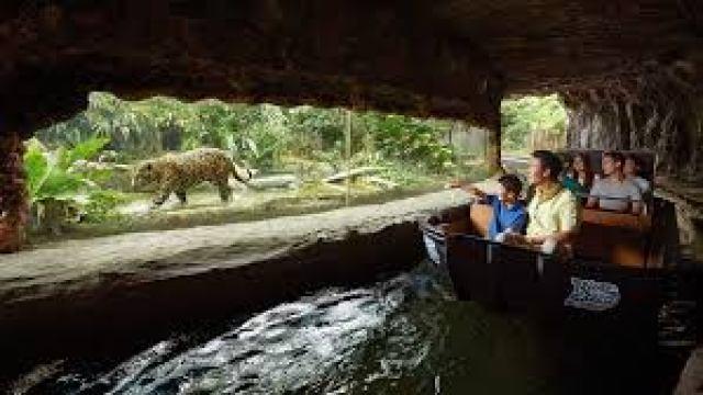 download 1 River Safari Overview