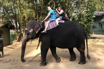 Экскурсии и развлечения на Шри-Ланке 🇱🇰