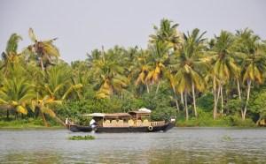 Kerala #7