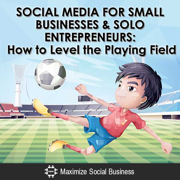 SOCIAL-MEDIA-FOR-SMALL-BUSINESSES-&-SOLO-ENTREPRENEURS-How-to-Level-the-Playing-Field-600x600-V3