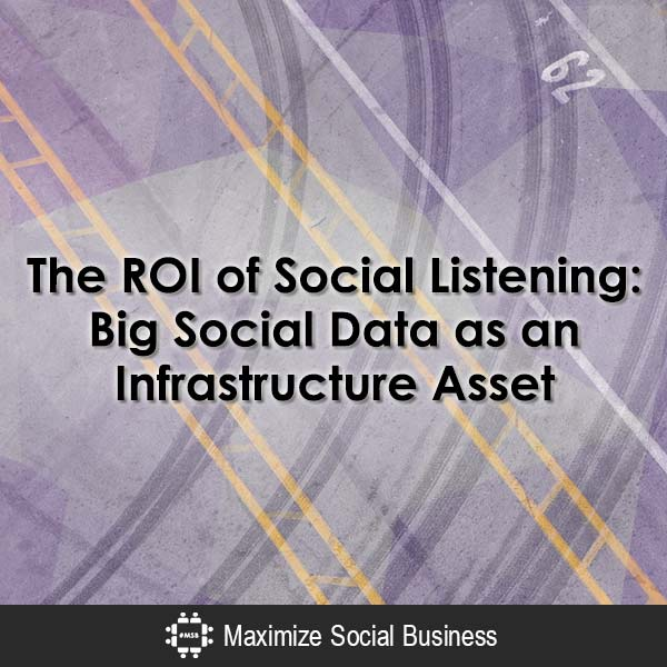 The ROI of Social Listening: Big Social Data as an Infrastructure Asset