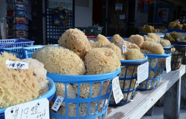 All sizes and prices at the sponge market.