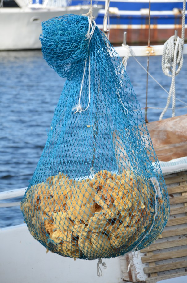 Sponges on a local fishing boat.