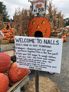 Entrance to Nall's Produce amazing pumpkin patch, Alexandria, VA