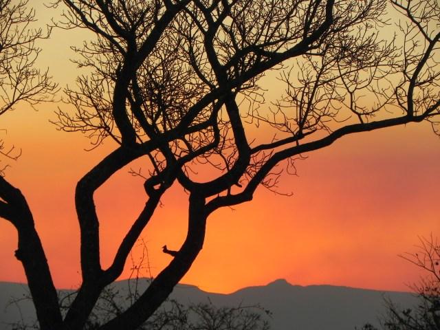 South African Sunset, Sabi Sands
