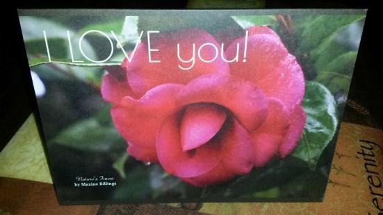 ZAZZLE CARD (LOVE) FRT