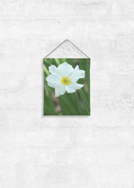 VIDA TAPESTRY SMALL (PAPER WHITE)