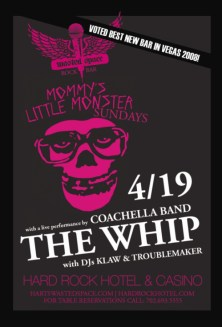 thewhip2