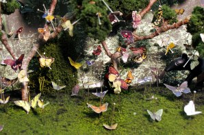 Detail of miniature diorama: Pinned Butterflies