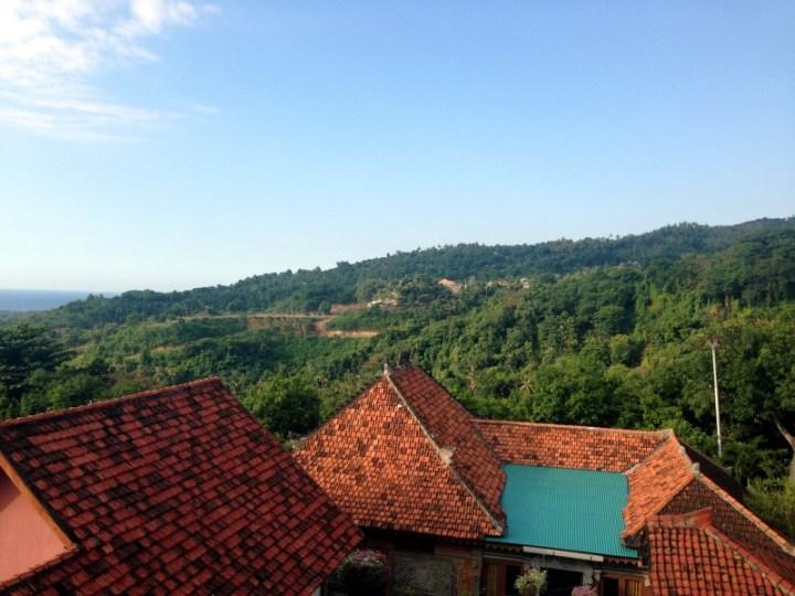 Landscape-view-2
