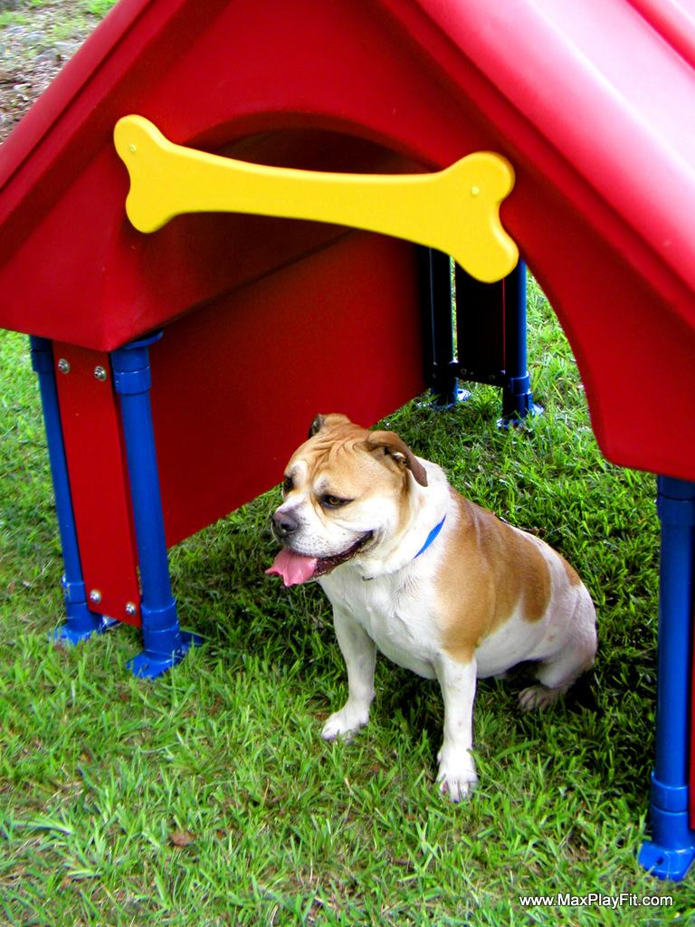Dog Park Equipment Max Play Fit Llcmax Play Fit