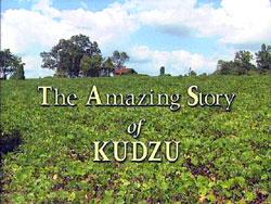 The Amazing Story of Kudzu