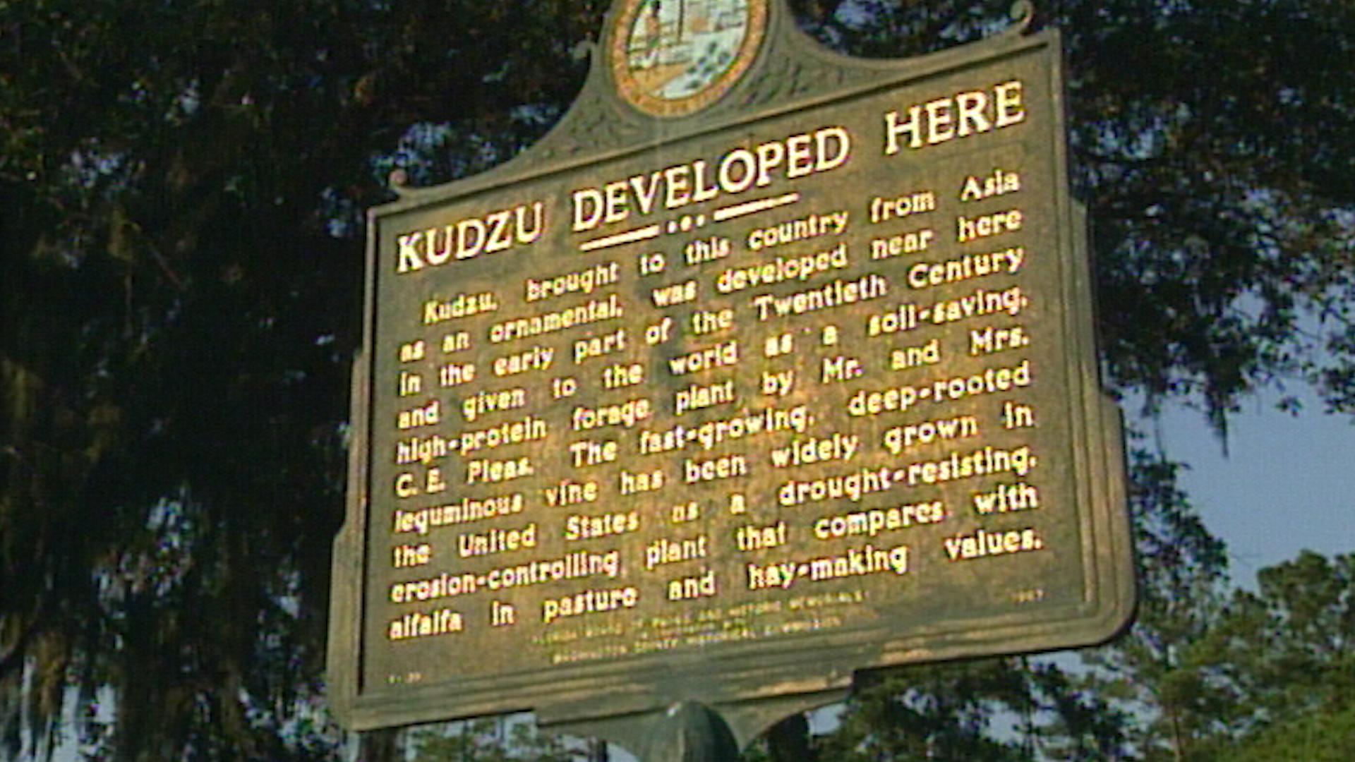 Kudzu Developed Here Sign